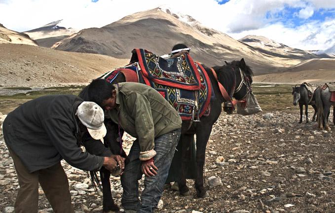 Nomadic-pastoral-tribe-of-Himalaya