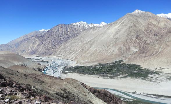 laddakh-pashmina-area