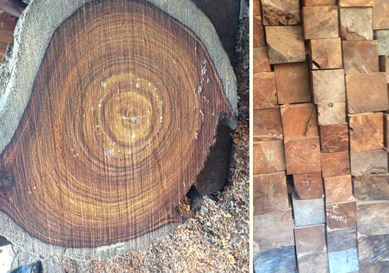 wood-carving-material